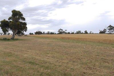 Landschap in de omgeving van de A8 South Australia