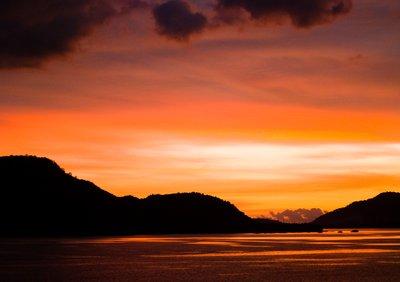 Lone Sunset