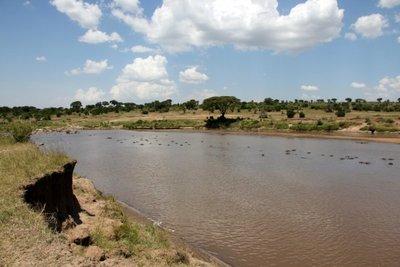 Maasai_Mara_River.jpg