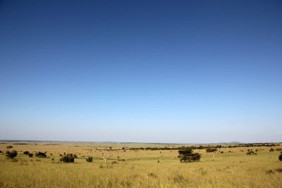 Serengeti_1.jpg