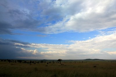Serengeti_3.jpg