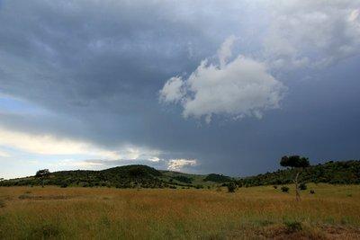 Serengeti_4.jpg