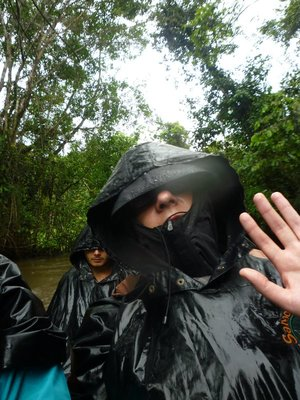 """it rains in the rainforest! we were so lucky it wasn't like this for 4 days"""