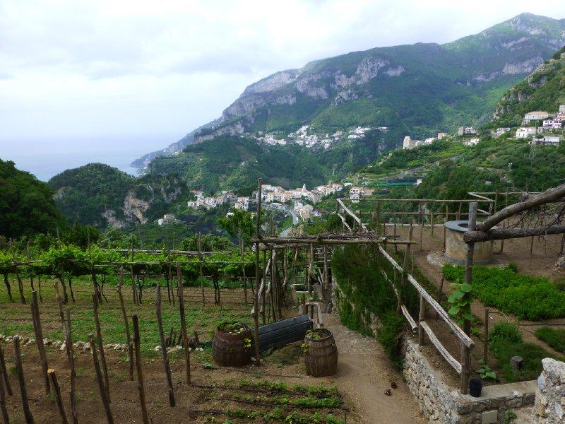 large_Italy_2013_341.jpg