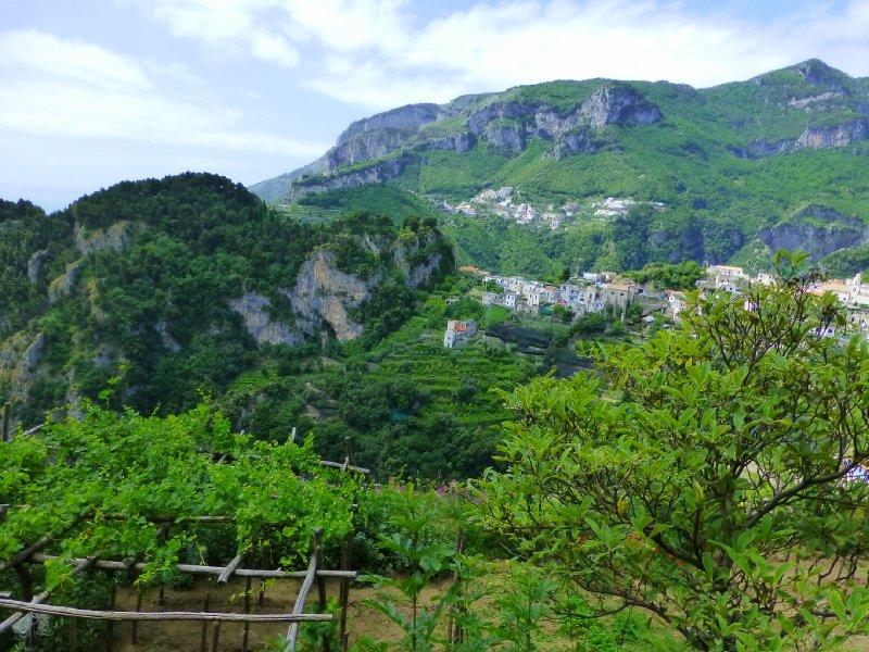 large_Italy_2013_370.jpg