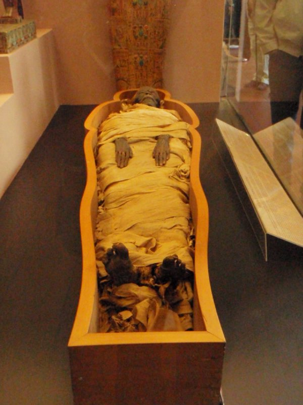 A Mummy from the Vatican Museum&#39;s Egyptian Collection