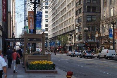 Adams Avenue, street scene -tulips in flower everywhere
