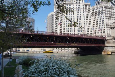 Cruise along the Chicago River