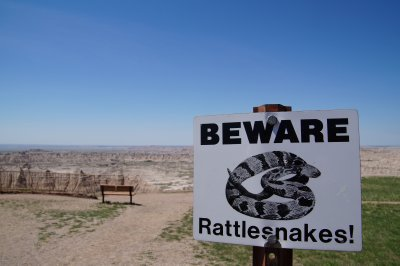 Badlands National Park - There is quite a lot of wildlife here.