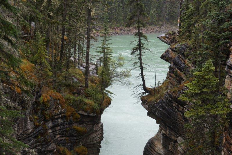 Athabascar Falls - bottom