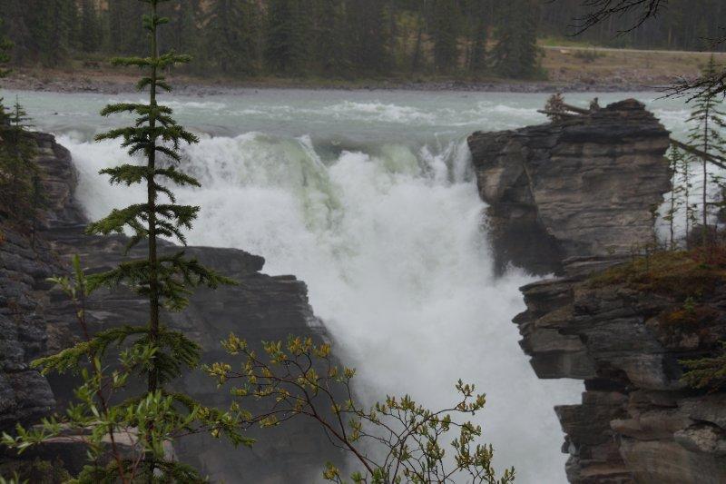 Athabascar Falls