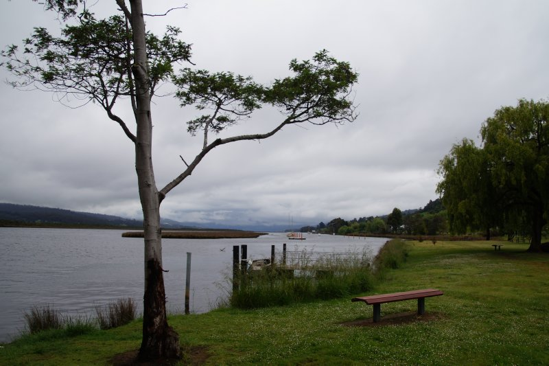 Camp ground at Franklin foreshore
