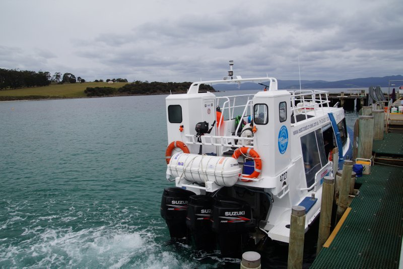East Coast Ferry with 3 x 300HP Suzuki outboards