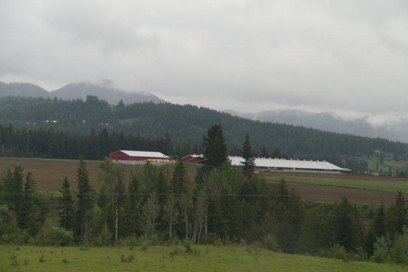 Farm outside Chase