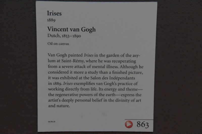 Getty Centre Vincent Van Gogh IRISES previously owned by Alan Bond 1