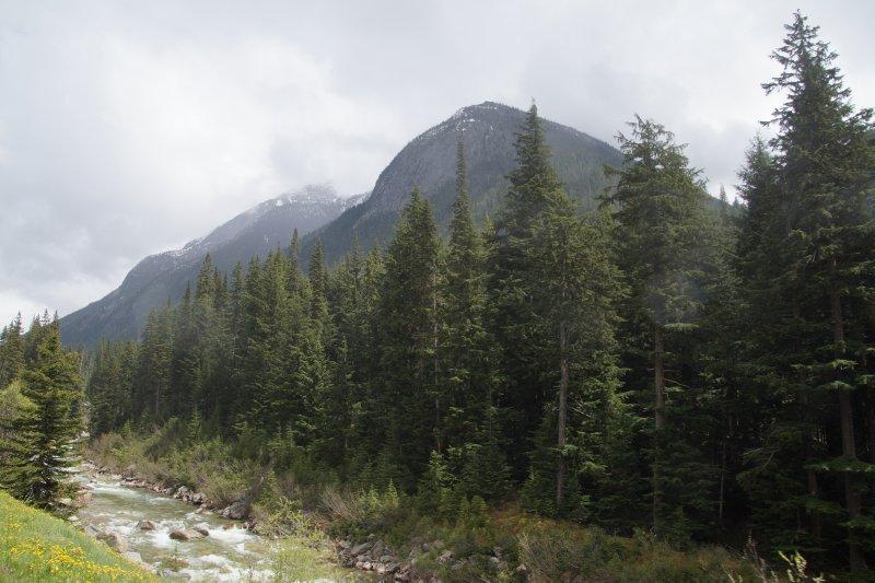 Illecilleweat River area