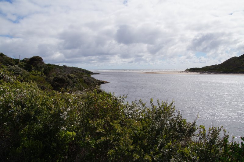 Mouth of the Arthur River