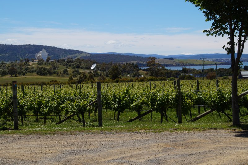 Mt Pleasant Astronomy Observatory view from Frogmore Vineyard