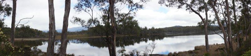 Panorama at Ida Bay