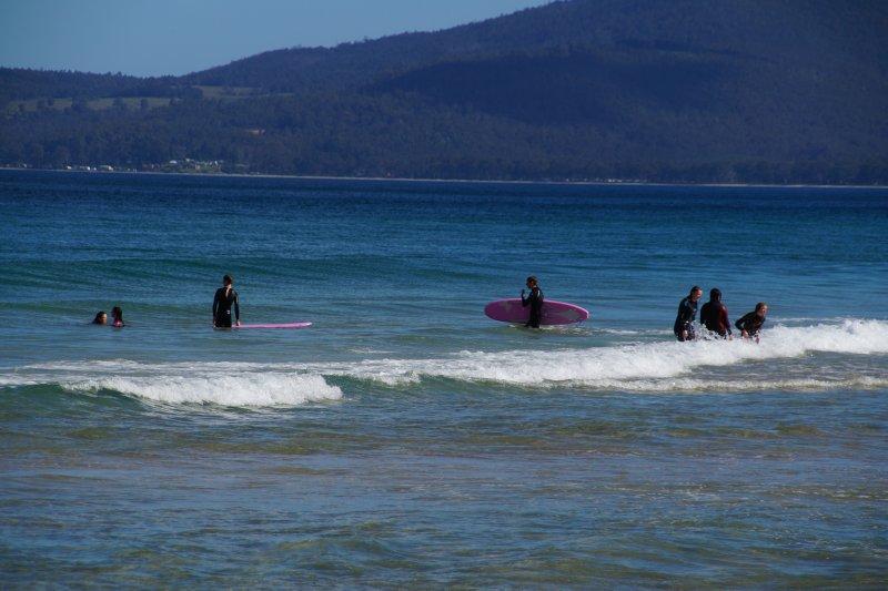 Surfing Tassie style at the Neck Beach