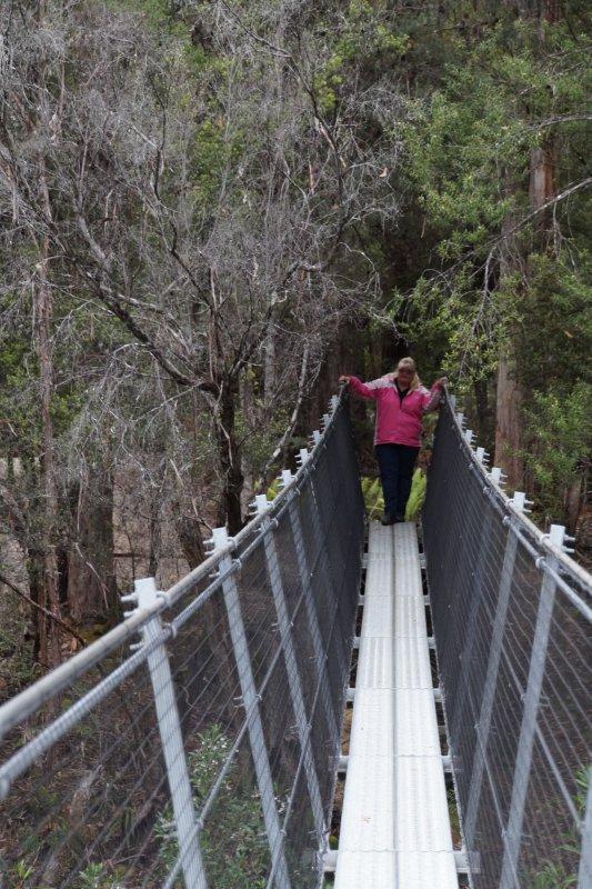 Suspension Bridges over the Huon River