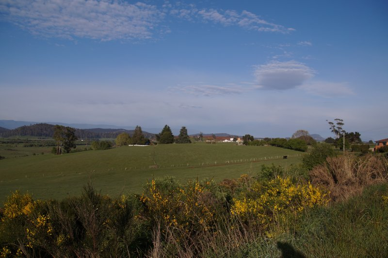 View near Deloraine (3)