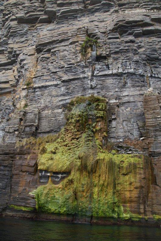 Waterfall at Fossil Cliffs, Maria Island