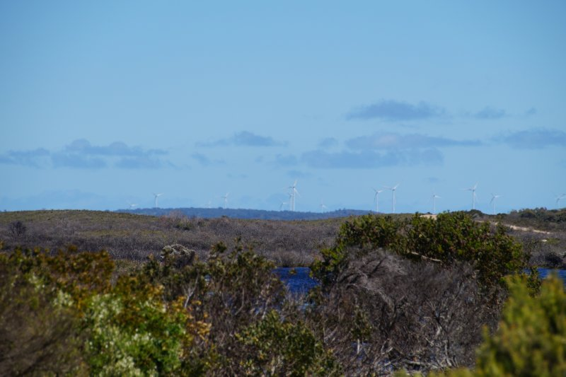 Wind farm near Musselroe Bay