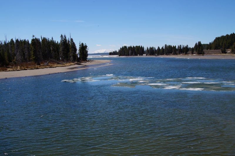 Yellowstone National Park - Lake Village area on the Yellowstone River - stop for picnic 2