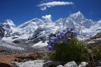 large_Nepal_350.jpg