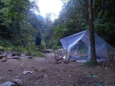 Our Jungle Camp