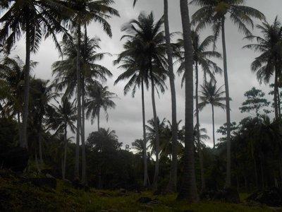 Walking around Pulau Weh