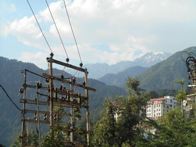 View of the mountains from Dharamshala