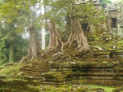Inside the Bayon temple complex