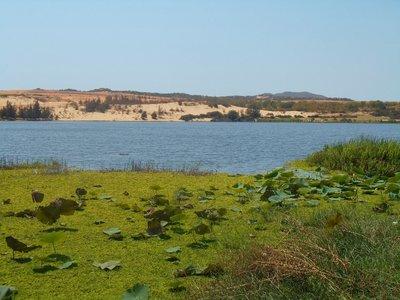 Lake near the white sand dunes