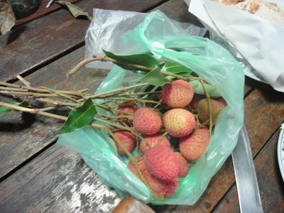 lychees from the market