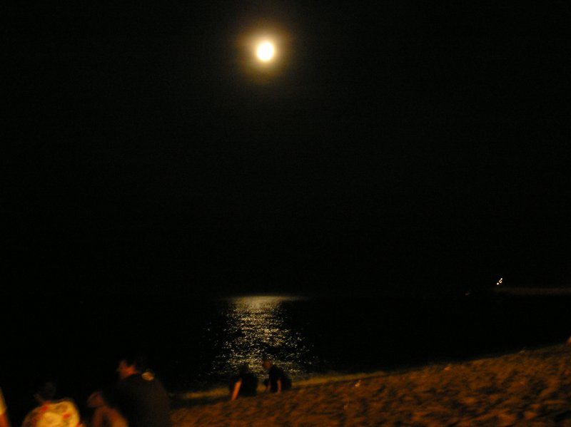 barca beach at night