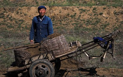 Chinese farmer