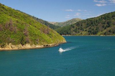 Trajet Wellington-Picton, Nouvelle-Zélande
