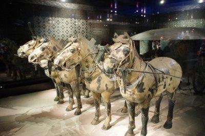 Musée armée en terre cuite