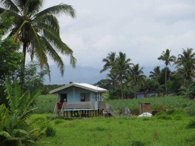 Maison typique fidjienne sur la route entre Nadi et Lautoka
