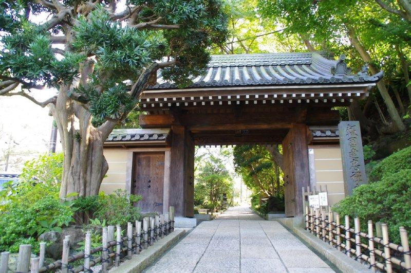 Le temple Hokoku-ji à Kamakura