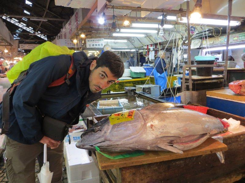Le marché aux poissons de Tokyo