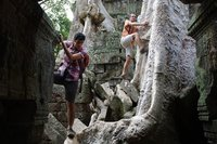 Temple Ta Prohm à Angkor au Cambodge