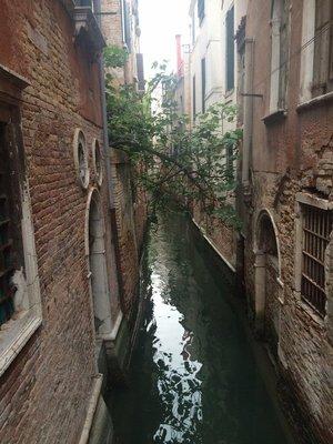 Nearby canal.jpg