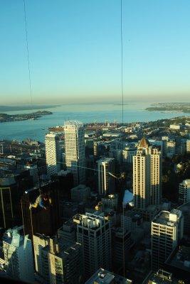 Auckland__2_.jpg