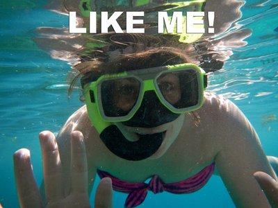 LIKE_ME_cover.jpg
