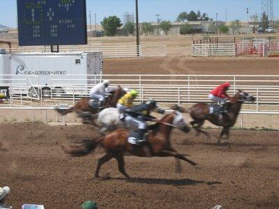 Quarter_Horses.jpg