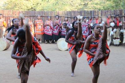 Swazi dancing