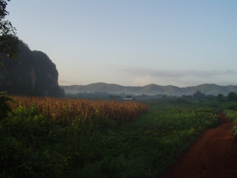 Red dirt road in Vinales